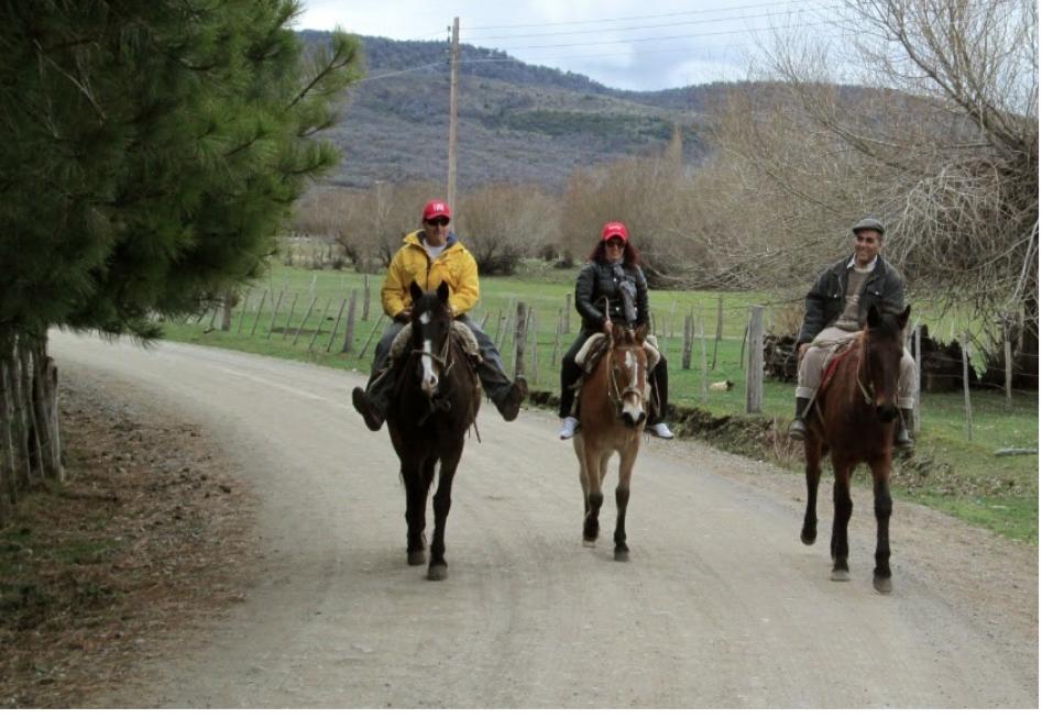 Recorrido por el campo a caballo